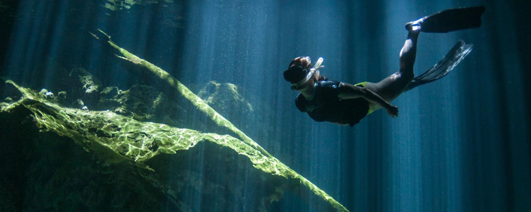 Scuba diver in Taj Mahal Cenote, Riviera Maya, Mexico
